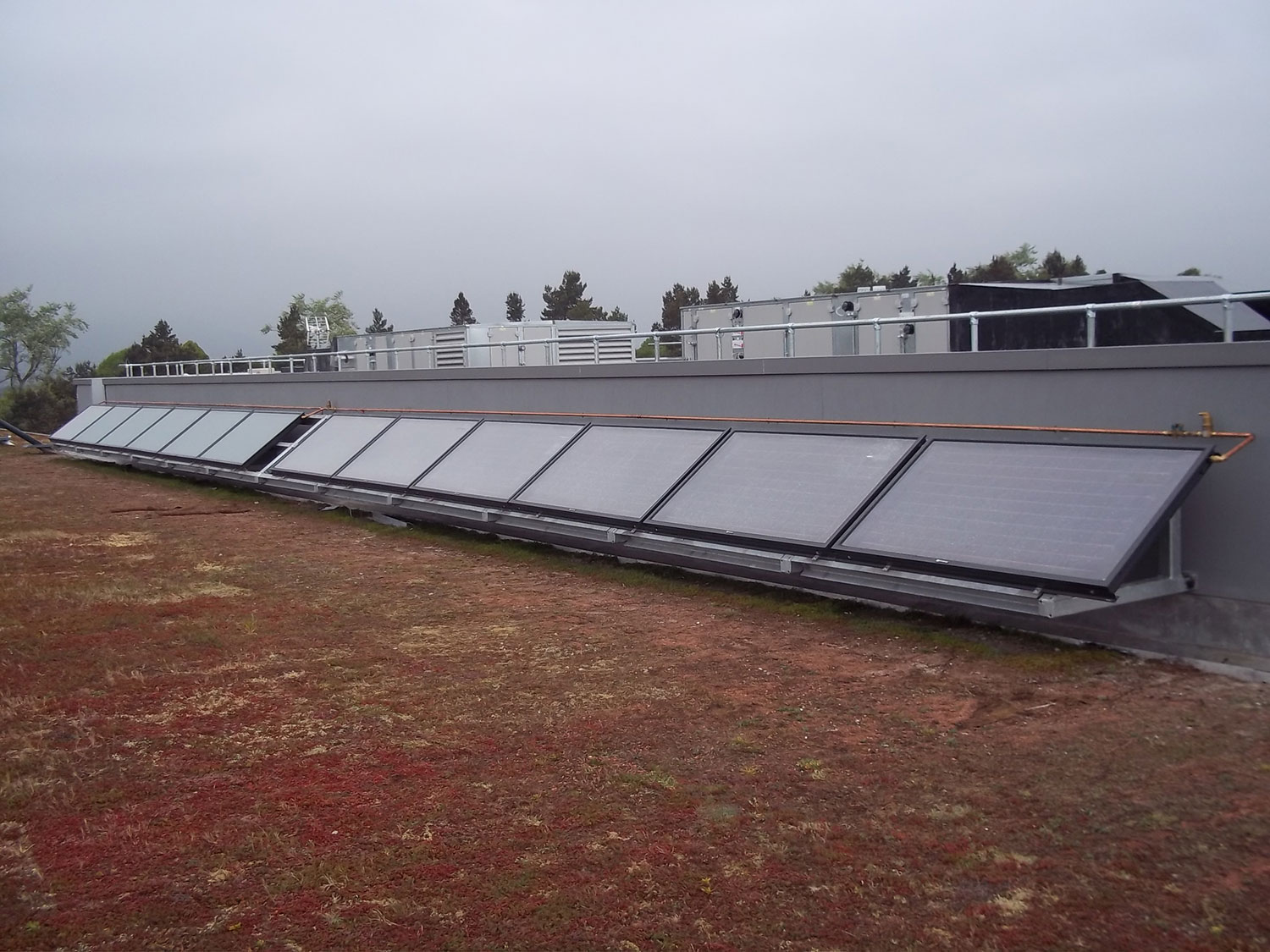 Queens Solar Thermal panels mounted on A Frame above Sedum Green Roof